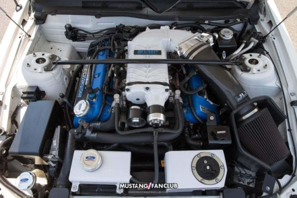 mustang week 2016 mw16 mustangfanclub mustang fan club meet and greet shelby gt500 supercharger supercharged