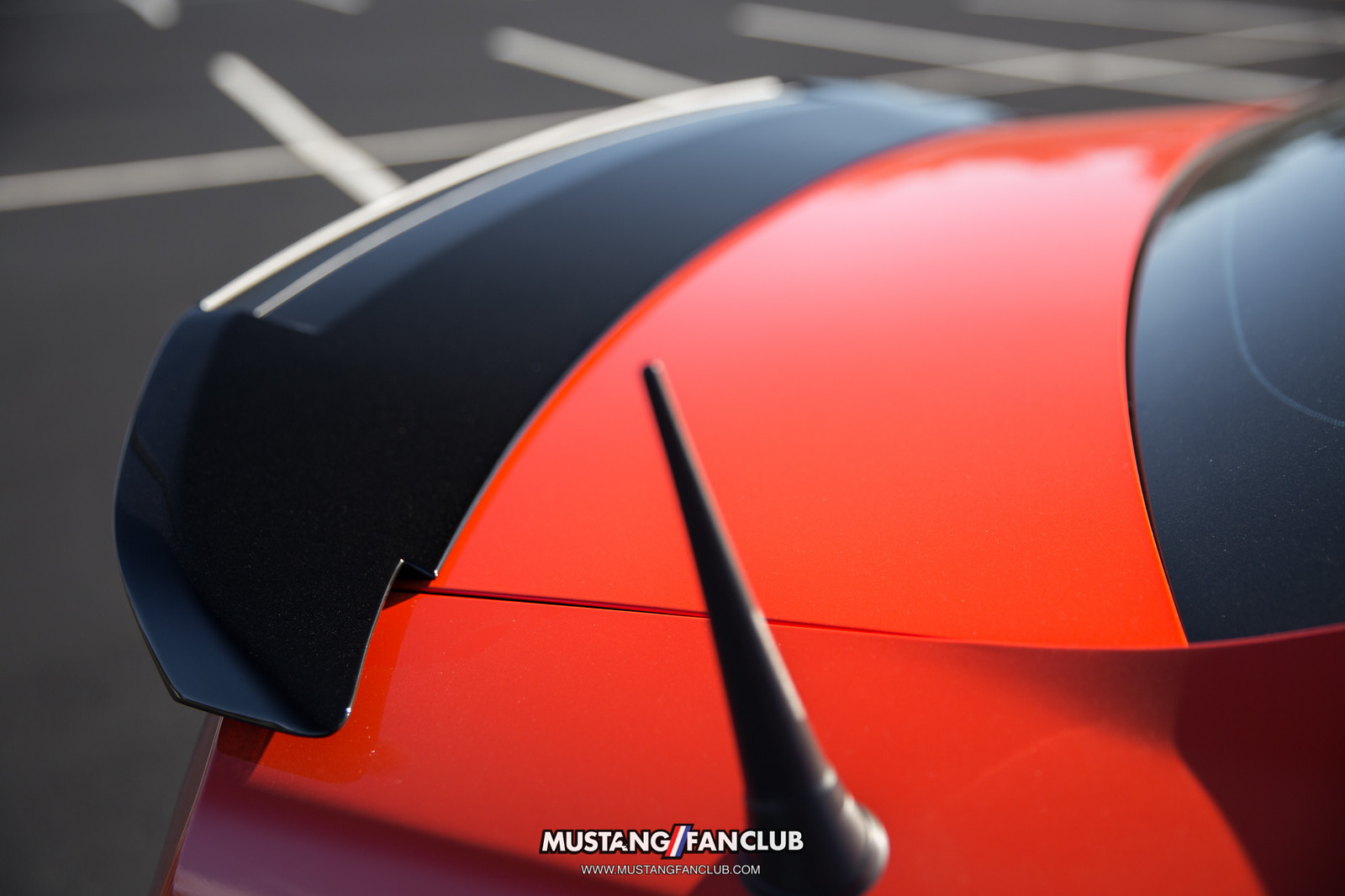 gt500 spoiler shorty antenna ford mustang boss 302 competition orange gloss black mustangfanclub