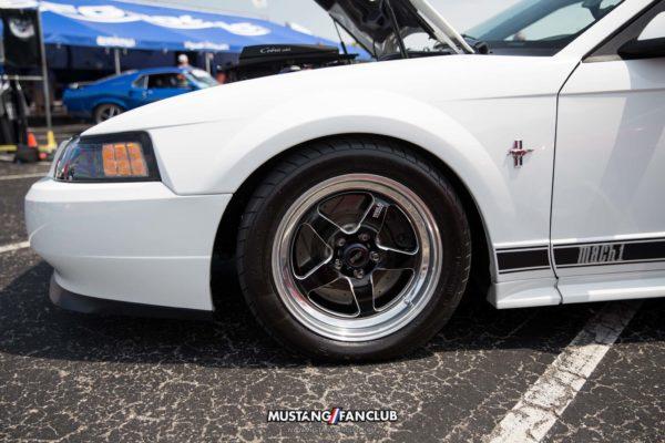 Mustang Week 2016 MW16 Mustangfanclub Fan Club photography mustangs car show mach 1