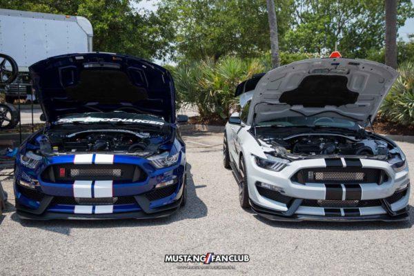 Mustang Week 2016 MW16 Mustangfanclub Fan Club photography mustangs car show shelby gt350
