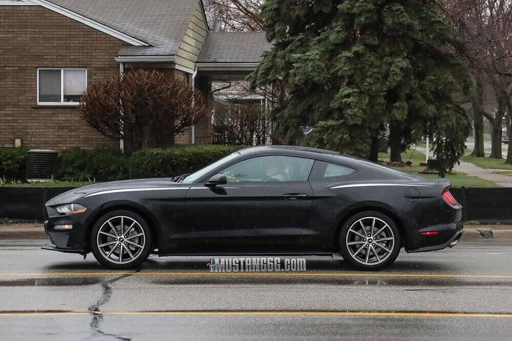 '18 2018 ford mustang shadow black accent stripe mustangfanclub fan club s550 refresh ecoboost