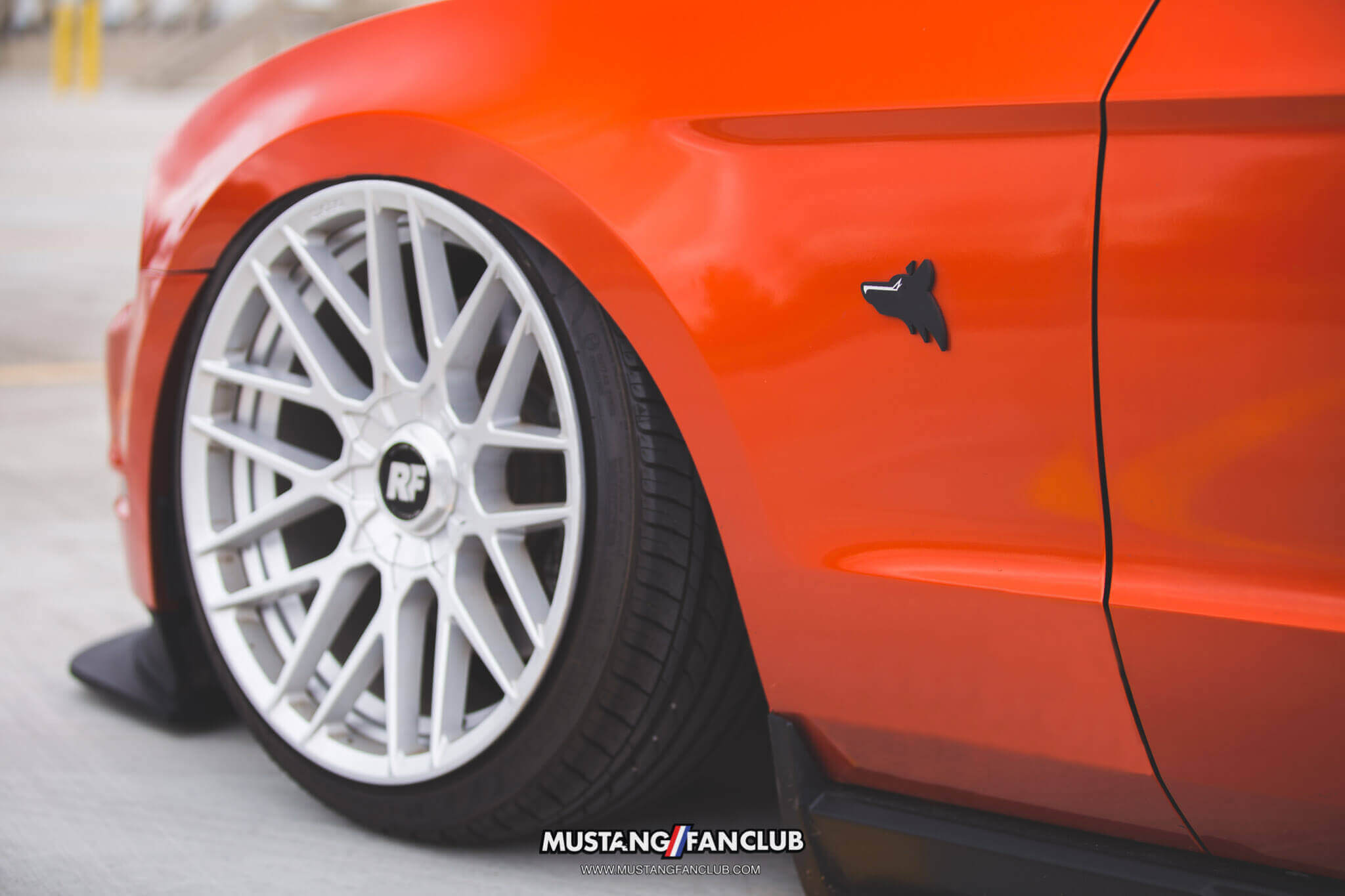 mustang fan club mustangfanclub @mustangfanclub 2011 11 mustang coyote 5.0L 5.0 wrapped bagged air suspension air lift performance rotiform wheels dillon shand RSE anything coyote emblem badge upr products S197 3m 1080 fiery orange