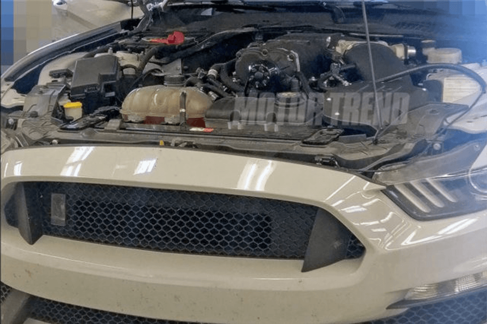 shelby gt500 mustang mustangfanclub new '18 2018 5.2L 2.65L supercharger supercharged 2.