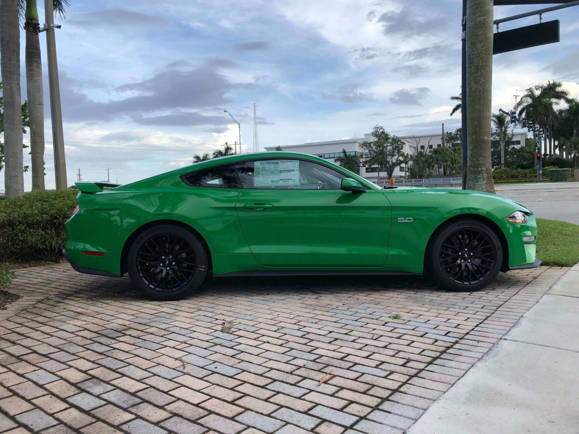 2019 Mustang GT Need for Green