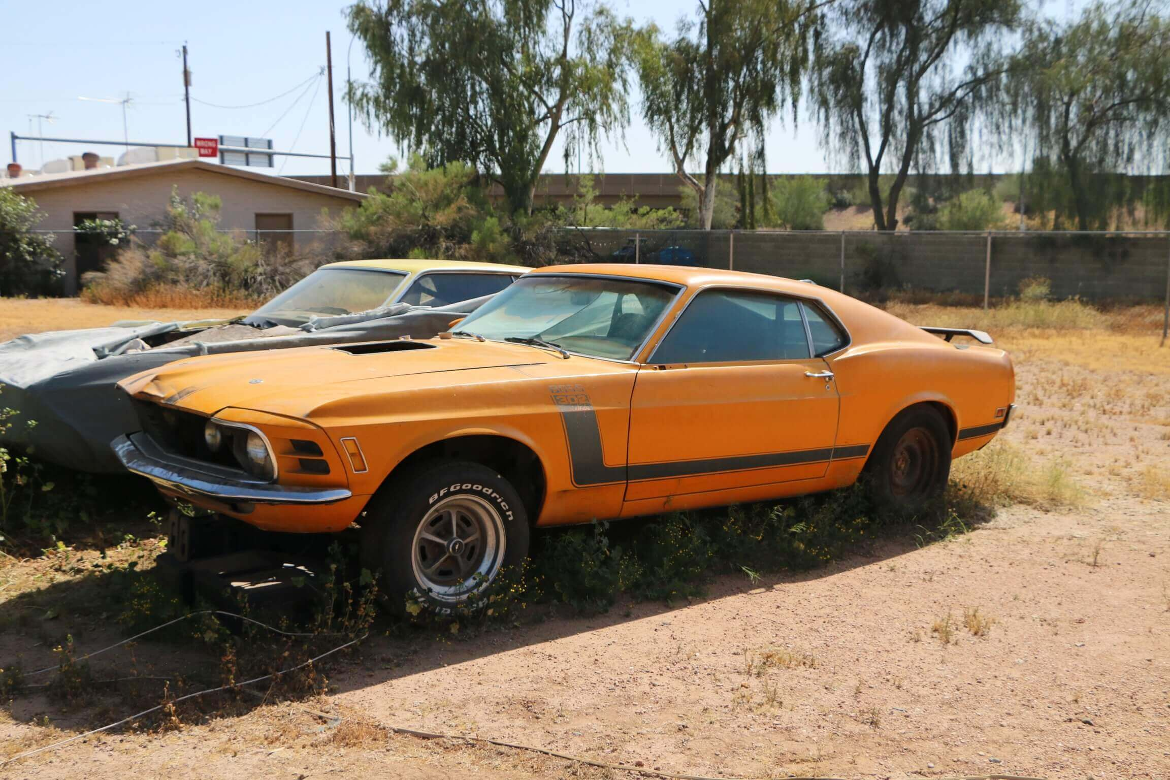 Cars In Barns: 1970 Ford Mustang BOSS 302
