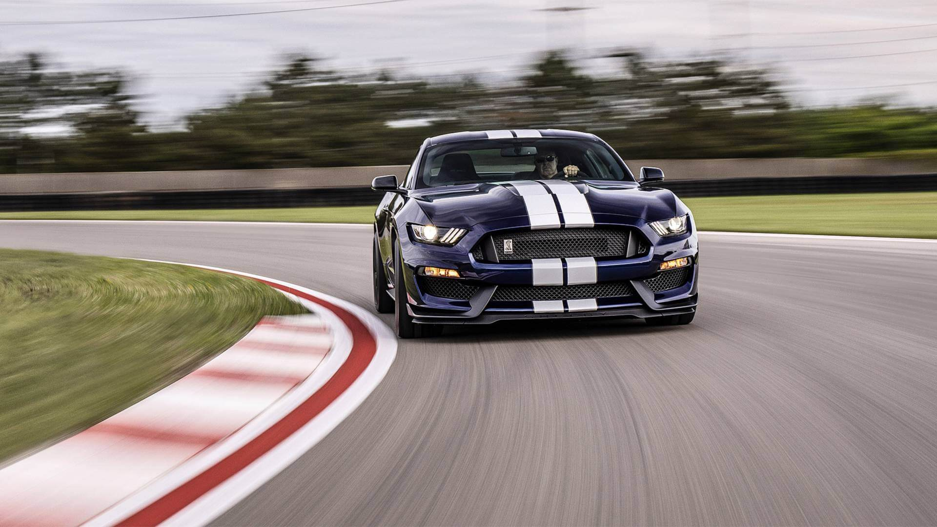 2019 Shelby GT350 and GT350R Order Guide