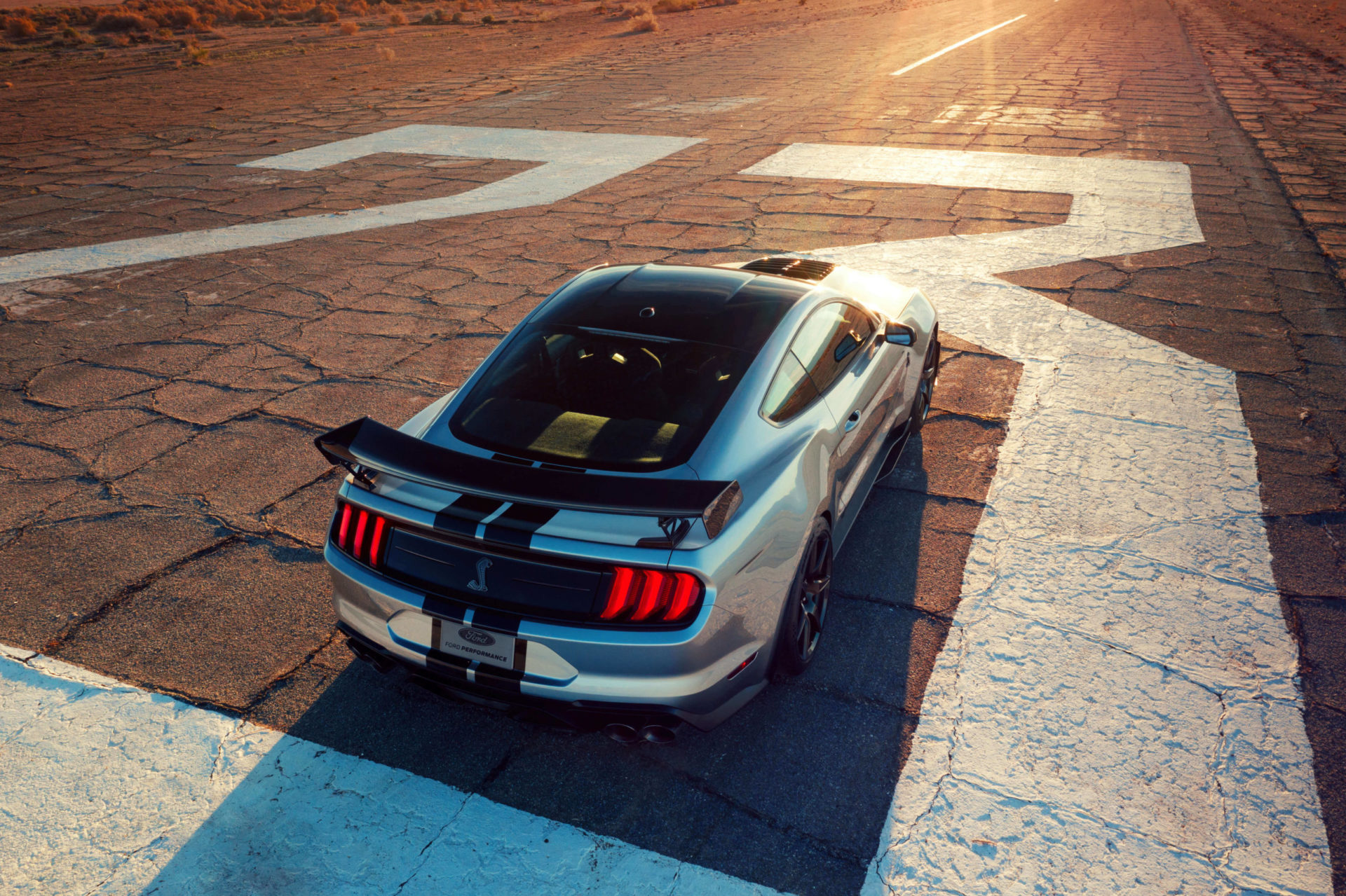iconic silver gt500