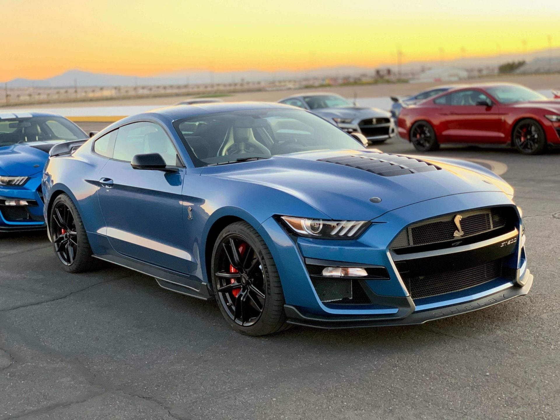 2020 GT500 color options Ford Performance Blue
