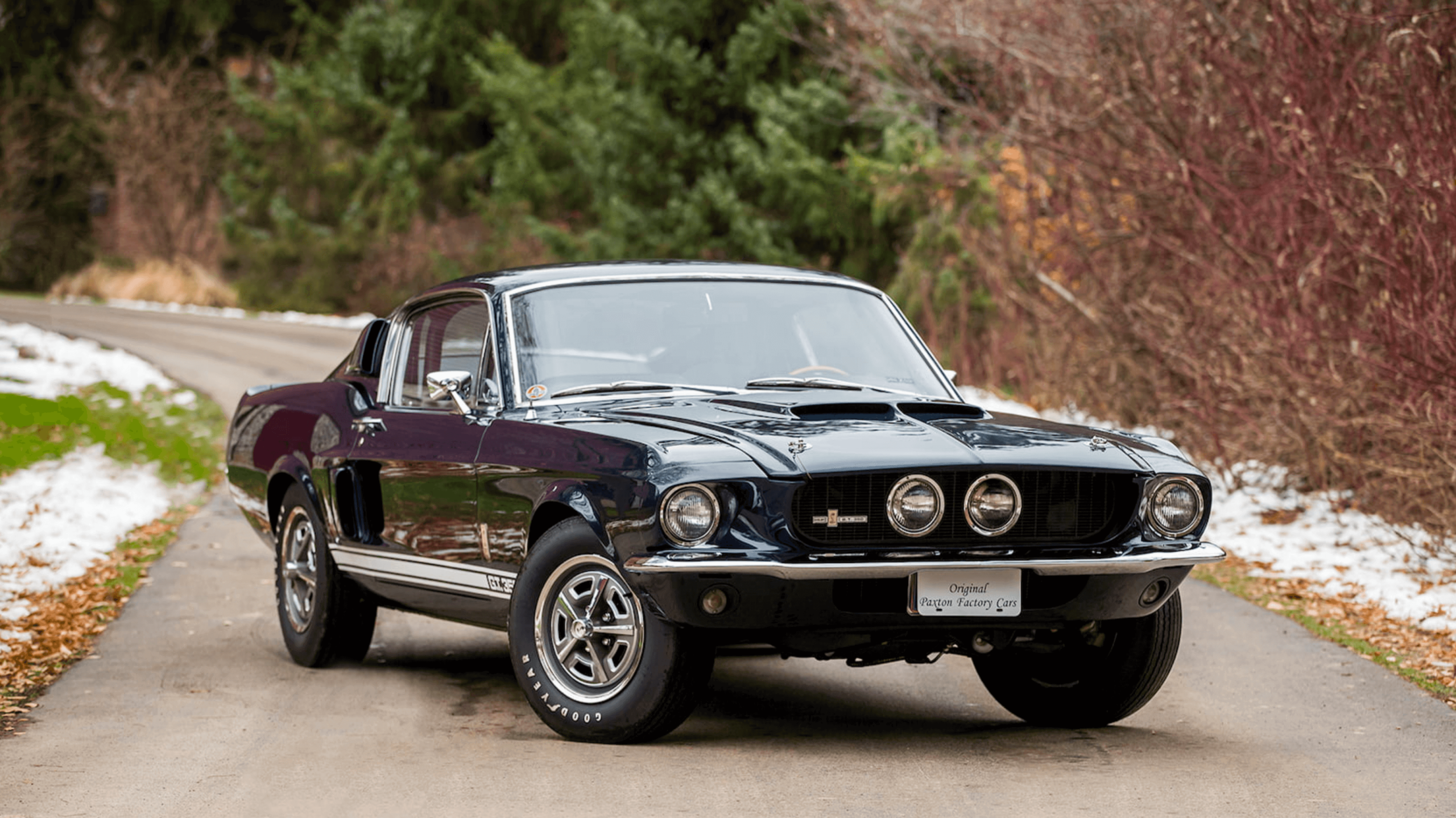 Mustang sold at Mecum Shelby GT350