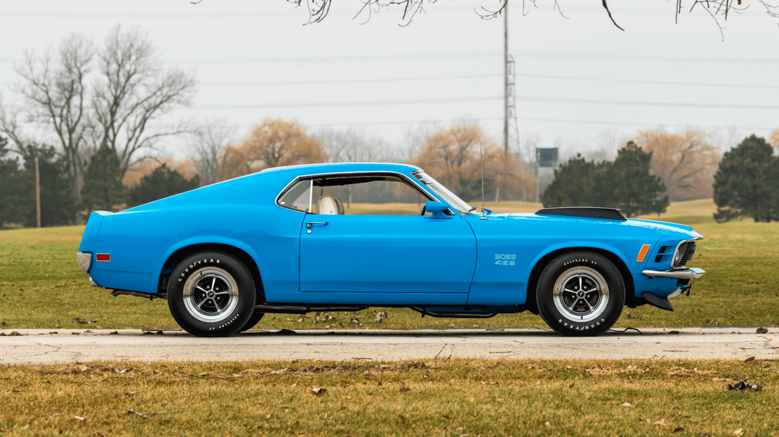 Mustang sold at Mecum Boss 429