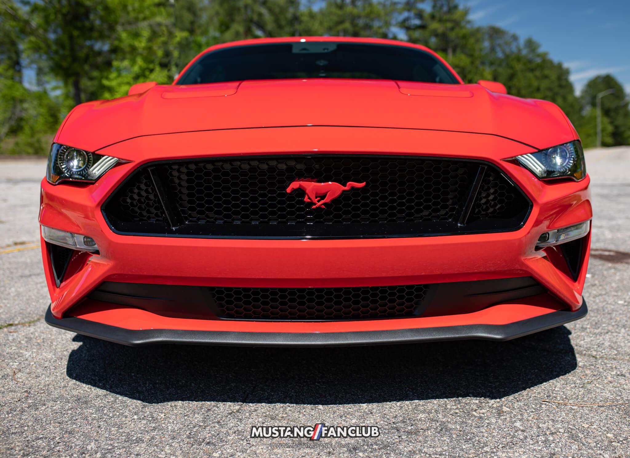 race red mustang emblem