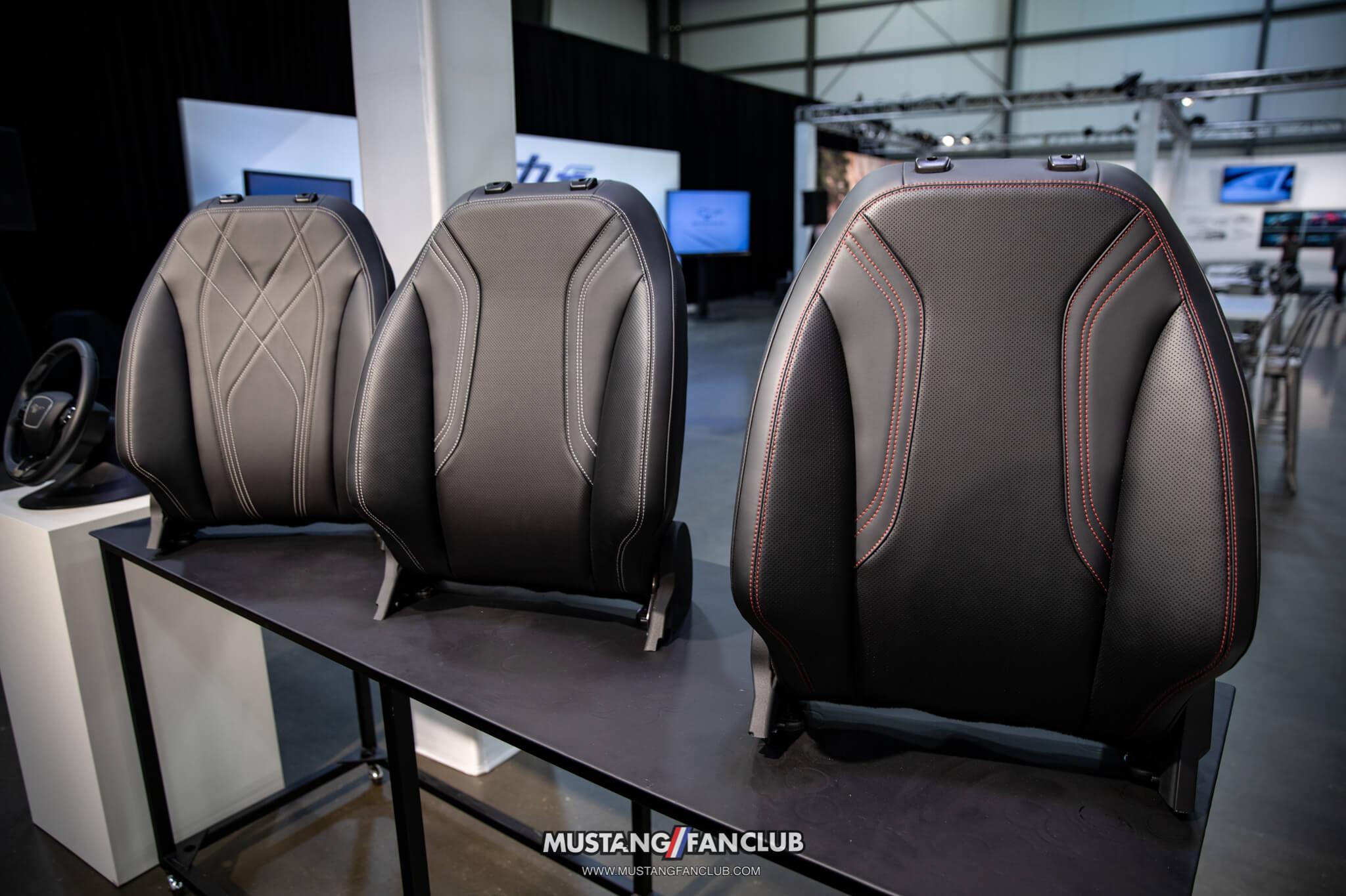 Mach E Interior Options